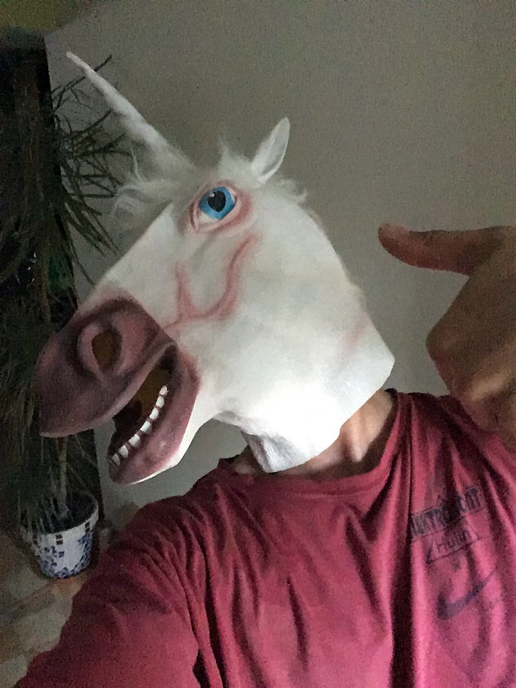 Masque Licorne photo review